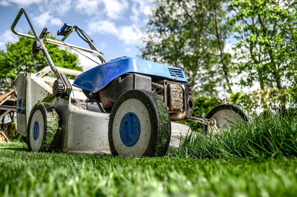 Taking care of your back yard like a pro
